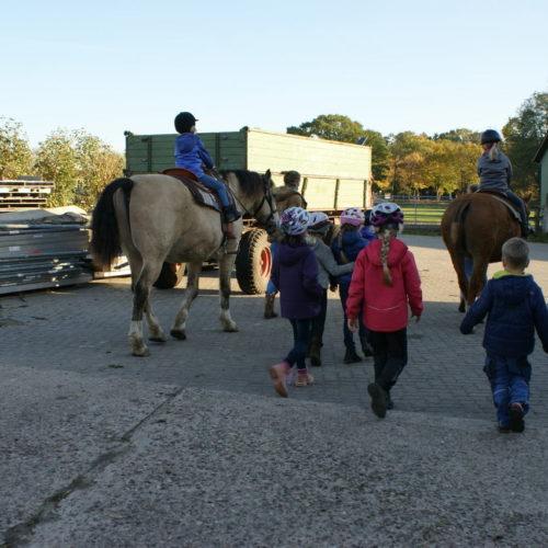Pferdehof Reithof mit Pferden Geburtstag mit reiten Ponys